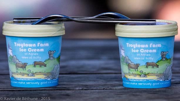 Troytown farm Ice Cream