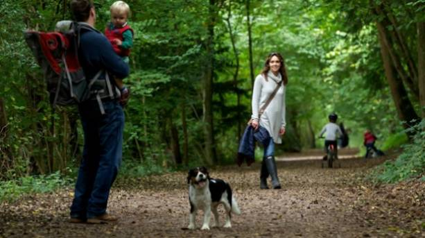 A family walking through the Forest of Dean