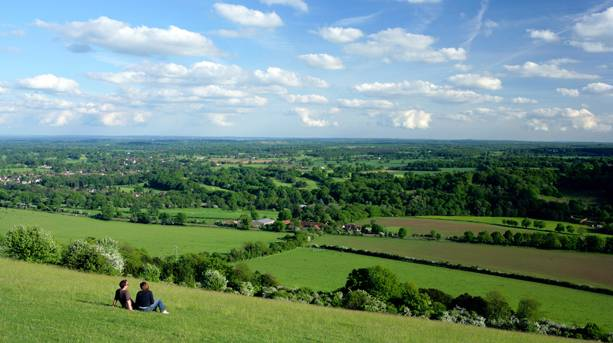 Dorking from Boxhill