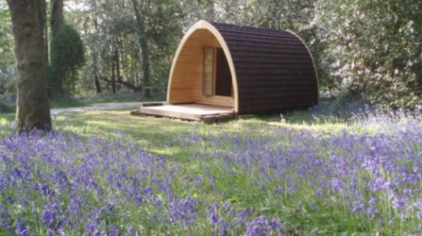 A Ruthern Valley cabin
