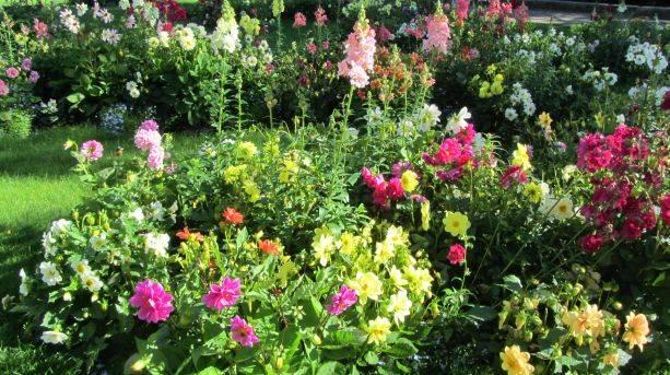 Shibden Estate's flower beds
