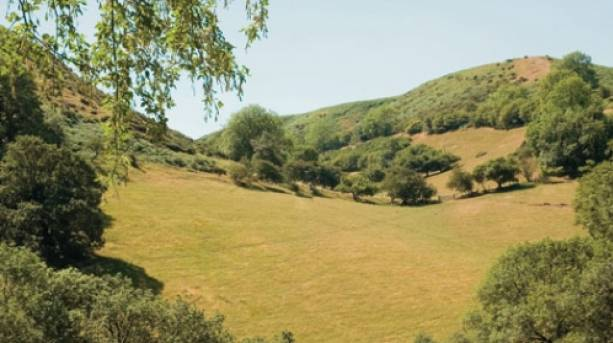Cwm Dale, walking distance from All Stretton Bunkhouse