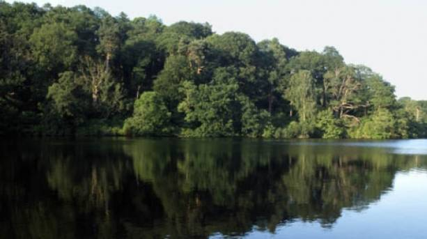 Colemere, one of North Shropshire's glacial meres