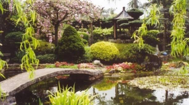 Pureland Japanese Water Garden