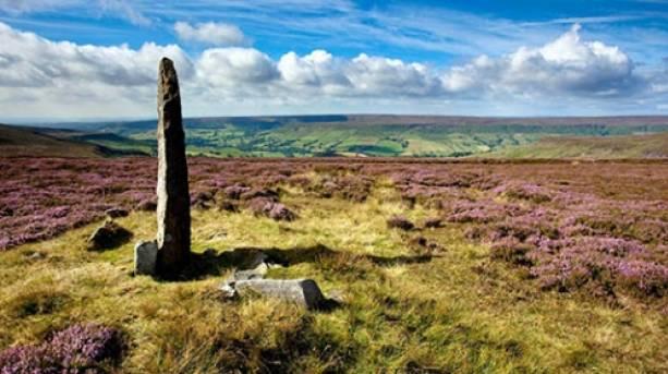 Standing stone on Blakey Moor above Farndale