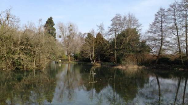 The lake at Stokesay Court