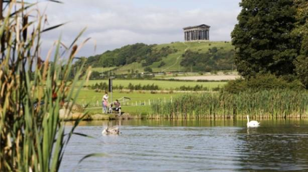Herrington Country Park with Penshaw Monument in background