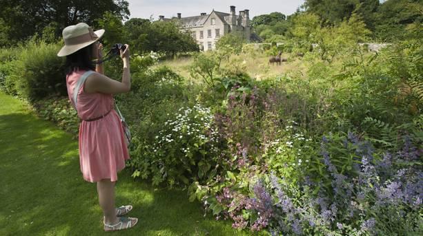 The beautiful gardens at Nunnington Hall