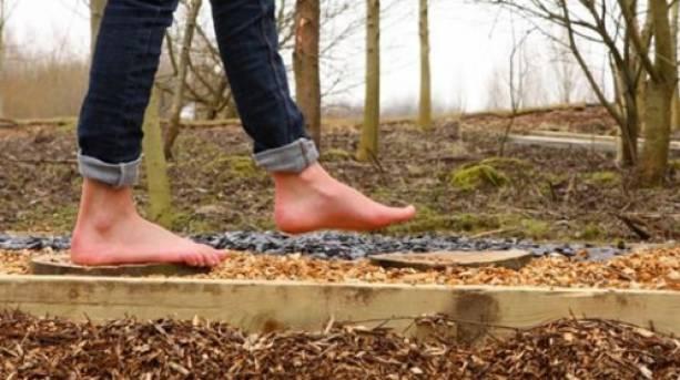 Conkers Barefoot Walk