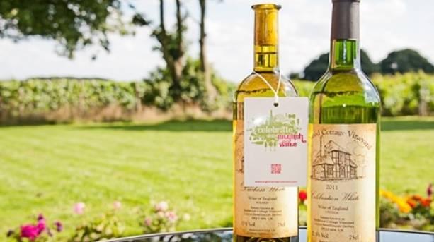 The National Forest & Beyond - Sealwood Vineyard, wine bottles