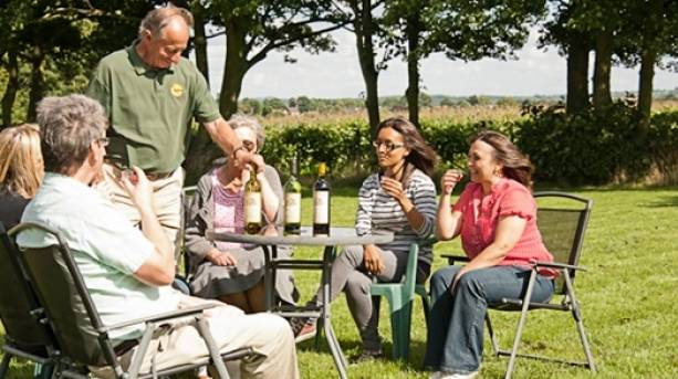 The National Forest & Beyond - Sealwood Vineyard wine tasting