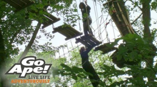 High-wire adventure at Go Ape