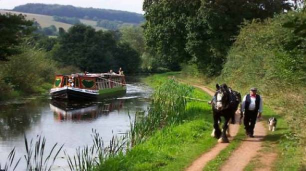 Enjoy a ride on a horse-drawn barge in Devon | VisitEngland