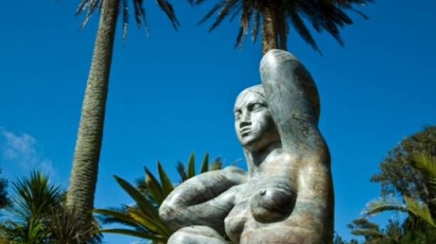 Visit sub-tropical Abbey Garden