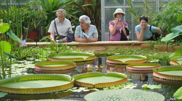 University of Bristol Botanic Gardens
