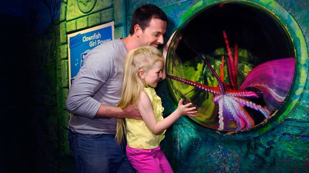 Dad and daughter at SEA LIFE Scarborough