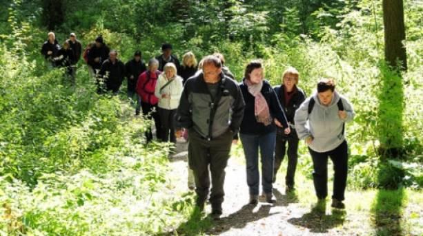 Wolds Festival walk through Millington