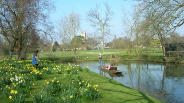 Punt past the daffodil covered river bank