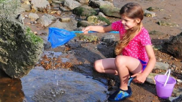 Explore the rock pools of Hunstanton Beach
