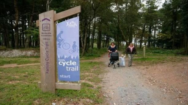 Family friendly trails through Haldon Forest Park