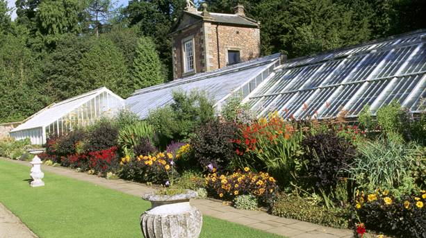 Glasshouse at Wallington Hall