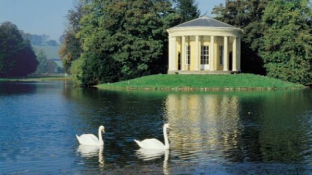Two swans on the lake in the Chiltern hills