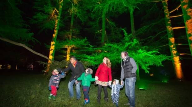 Exploring Westonbirt at Christmas