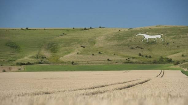 The Pewsey White Horse, Wiltshire