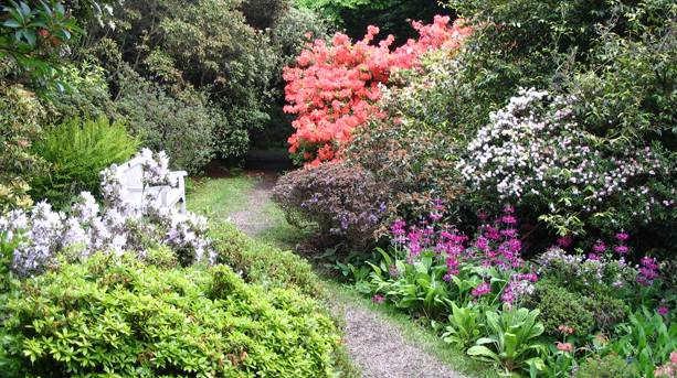 Woodland Garden Walk, Howick Hall