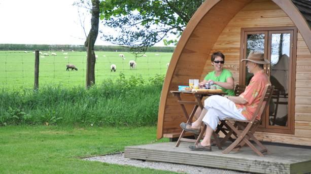 Woodovis Park Glamping Pods
