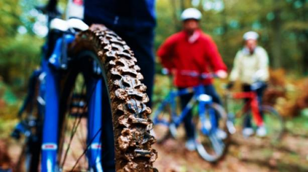 Off road cycling in the Wyre Forest