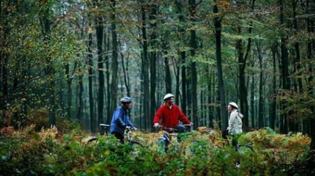 Enjoy cycling in the Wyre Forest