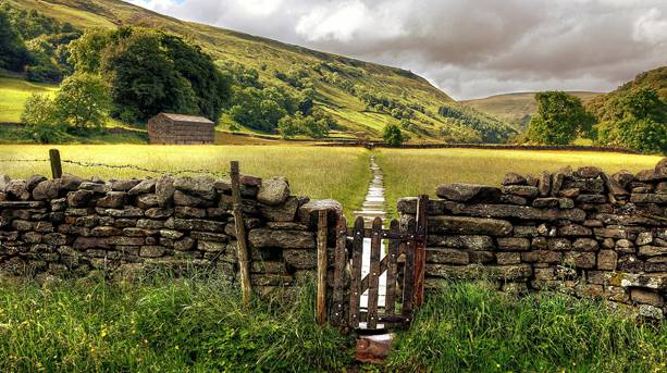 The barns and wall of Swaledale near Muker