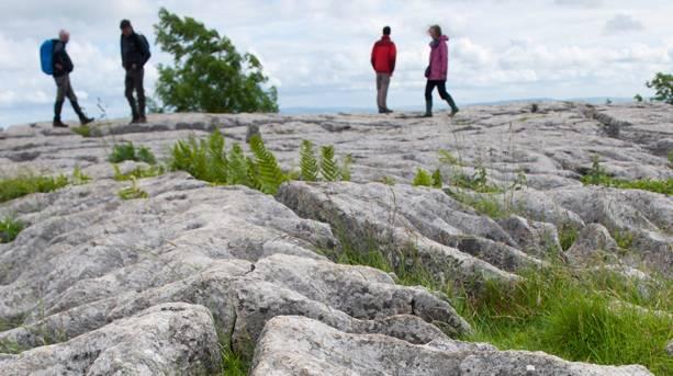 Limestone pavement on top of Malham Cove