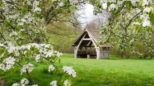 Spring blossoms at Yorkshire Arboretum