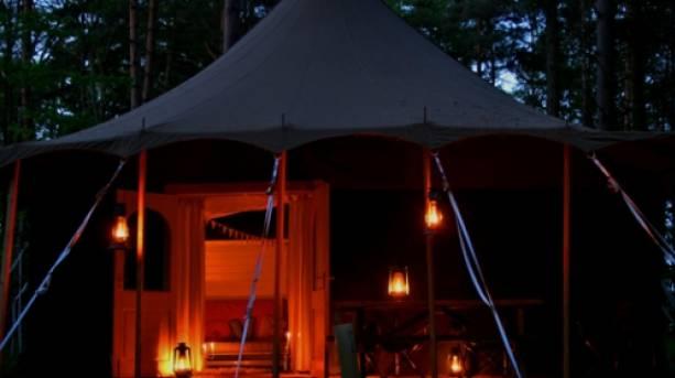 Tents at Jollydays