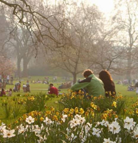 City parks and green spaces