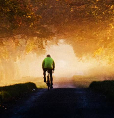 A cyclist in the Vale of Belvoir. Pool of sunlight and overhanging trees, Leicestershire, England.