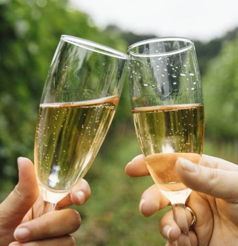 Two people toasting with sparkling wine at Bluebell Vineyard, Uckfield, East Sussex.