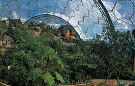 Broaden your horizons at Eden Project
