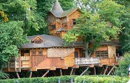 Alnwick Tree House