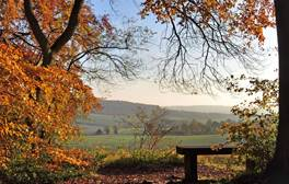 Look out towards the beautiful landmarks of the Chilterns