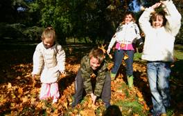 Go wild for the nature and wildlife of the Cotswolds