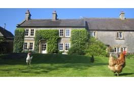 Enjoy a visit to Beechenhill Farm