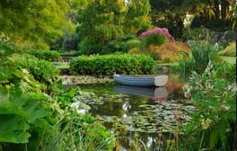 See breath-taking vistas at Beth Chatto Gardens