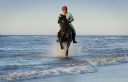 Horse-riding in Burnham-on-Sea