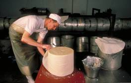 Watch cheese making at The Cheddar Gorge Cheese Company