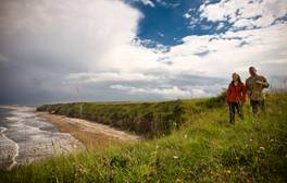 Spot rare flowers and butterflies on Durham's Heritage Coast