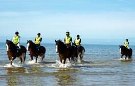 Take in the sea air on horseback