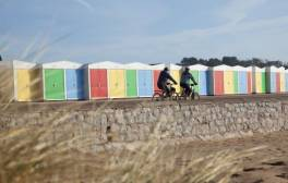 Set out on a family cycling break in the Heart of Devon